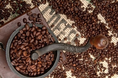 Coffee beans and grinder - fototapeta