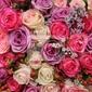 Fototapeta pastelowe kwiaty ślubne