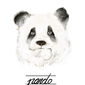 Panda - plakat wymiar do wyboru: 42x59,4 cm