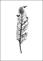 Pióro - plakat wymiar do wyboru: 20x30 cm