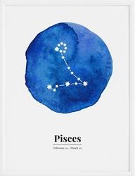 Plakat Pisces 40 x 50 cm