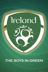 Irlandia Godło - plakat