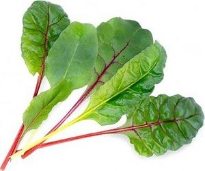 Wkład nasienny Lingot warzywa liściowe burak liściowy