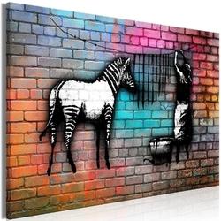 Obraz - pranie zebry - kolorowa cegła 1-częściowy szeroki
