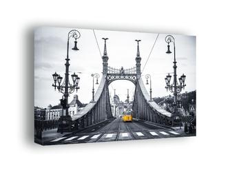 Budapeszt, most wolności - obraz na płótnie wymiar do wyboru: 90x60 cm