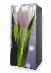 Foto naklejka na lodówkę tulipany p632