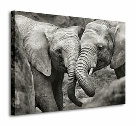 Elephants in Love - Obraz na płótnie