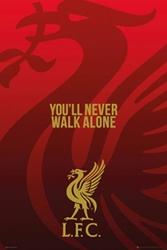 Liverpool Liverbird - plakat