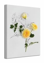 Yellow Roses - Obraz na płótnie