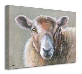 Looking sheepish - obraz na płótnie