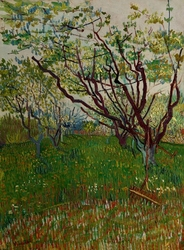 The flowering orchard, vincent van gogh - plakat wymiar do wyboru: 61x91,5 cm