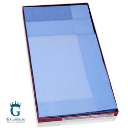 Niebieskie chusteczki bawełniane Guasch 10398.P001
