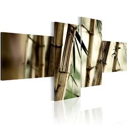 Obraz - inspiracja bambusem