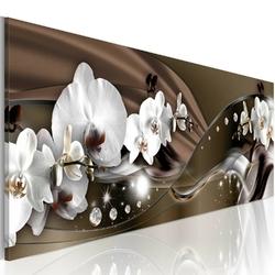 Obraz - czekoladowy taniec orchidei