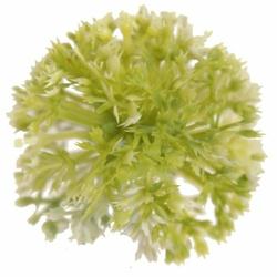 Kwiatowa kula CZOSNEK WYROBOWY - kremowo-zielony - kremowo-zielony