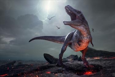 Fototapeta dinozaury 4301