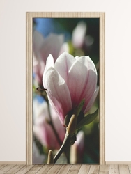 Fototapeta na drzwi magnolia p45