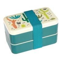 Lunchbox bento, kaktusy, rex london