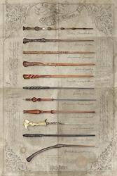 Harry Potter Różdżki - plakat filmowy