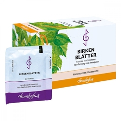 Herbata z liści brzozy saszetki