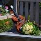 Fototapeta skrzypce na ławce fp 832