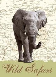 Dzikie safari słoń - fototapeta