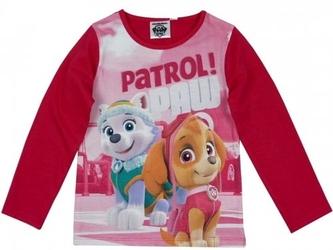 Bluzka psi patrol ,,patrol paw 4 lata