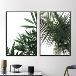 Zestaw dwóch plakatów - minimal tropics , wymiary - 20cm x 30cm 2 sztuki, kolor ramki - biały