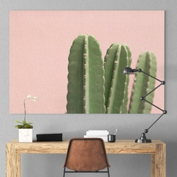 Obraz na płótnie - pink cacti , wymiary - 50cm x 70cm