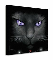 Spiral Magical Cat - Obraz na płótnie