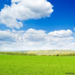 Fotoboard na płycie jesienne pole, niebieskie niebo i chmury.