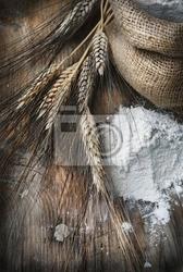 Obraz pszenica uszy