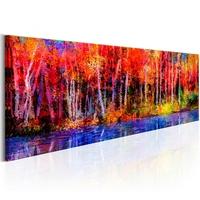 Obraz - kolorowe jesienne drzewa