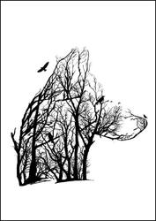 Wilk - plakat wymiar do wyboru: 70x100 cm