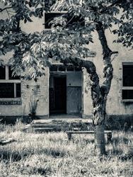 Opuszczony budynek 2 - plakat premium