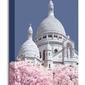 Sacre coeur infrared, paris - obraz na płótnie