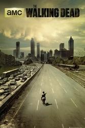 The Walking Dead Miasto - plakat