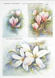 Papier ryżowy ITD A4 R277 kwiaty vintage