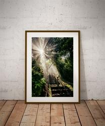 God light - plakat premium Wymiar do wyboru: 61x91,5 cm