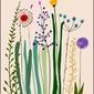 Polne kwiaty ii - plakat wymiar do wyboru: 61x91,5 cm