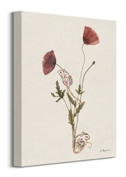 Wild poppies - obraz na płótnie