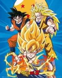 Dragon Ball Z 3 Gokus - plakat filmowy