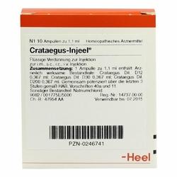 Crataegus Injeele
