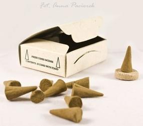 Patchouli cones - paczuli