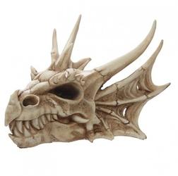 Smocza czaszka średnia - 25cm