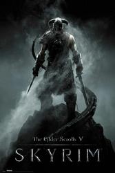Skyrim Dragonborn - plakat