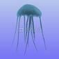 Naklejka samoprzylepna meduza
