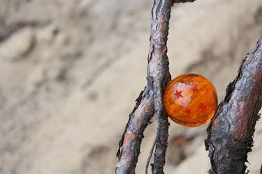 Dragon ball - smocza kula - plakat wymiar do wyboru: 100x70 cm