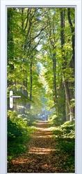 Fototapeta na drzwi drzewa 879