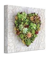 Kaktusowe serce - obraz na płótnie